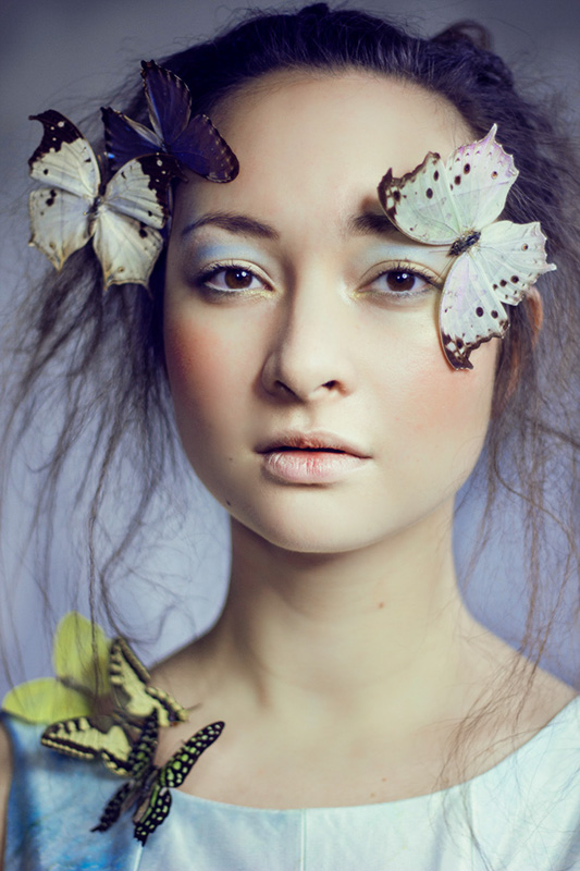 Efecto mariposa (the Butterfly Effect)